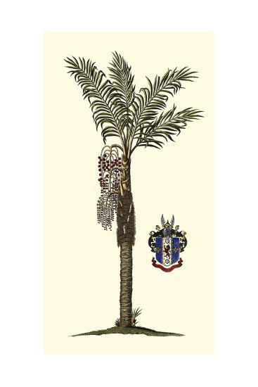 Elongated Exotic Palm I--Art Print