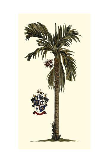 Elongated Exotic Palm II--Art Print
