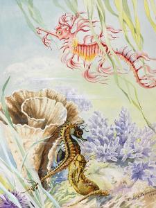 A Painting of an Australian Barrier Reef Sea Life Scene by Else Bostelmann