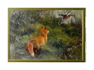 Eluding the Fox, 1912-Bruno Andreas Liljefors-Giclee Print