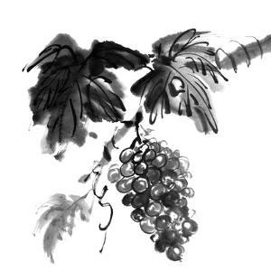 Chinese Traditional Ink Painting, Grapes On White Background by elwynn