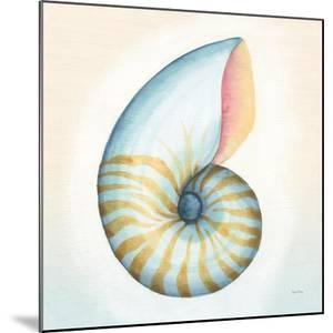 Boardwalk Nautilus by Elyse DeNeige