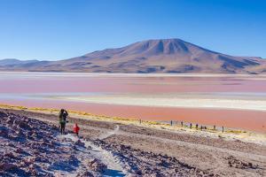 Laguna Colorada, Reserva Nacional De Fauna Andina Eduardo Avaroa, Los Lipez, Bolivia by Elzbieta Sekowska