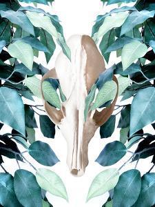 Greenery Skull by Emanuela Carratoni