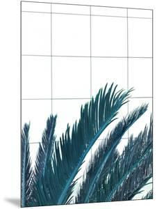 Palms On Geometry by Emanuela Carratoni