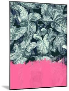 Pink Sorbet On Jungle by Emanuela Carratoni