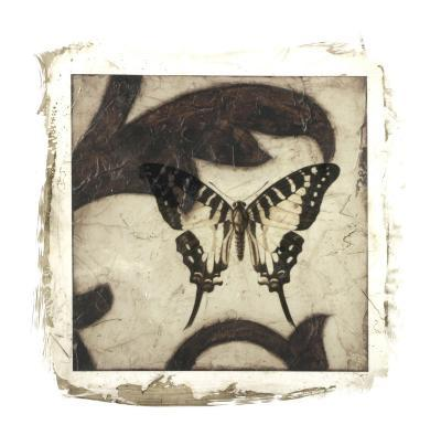 Embellished Scroll Nine Patch VI-Jennifer Goldberger-Giclee Print