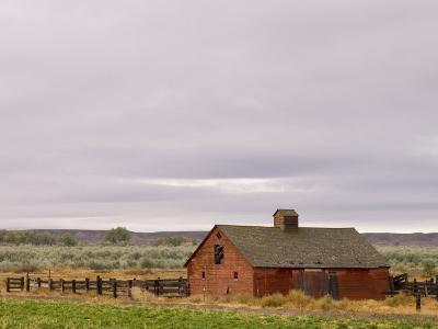 Emblem, Wyoming, United States of America, North America-Pitamitz Sergio-Photographic Print