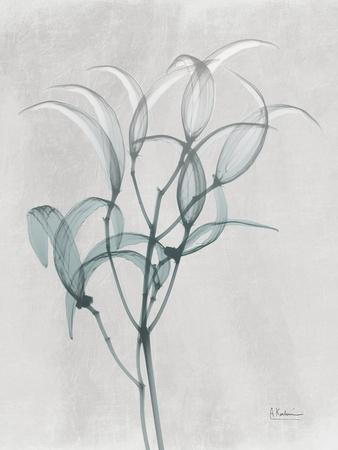 https://imgc.artprintimages.com/img/print/emerald-oleander-bush_u-l-q1bc51v0.jpg?p=0