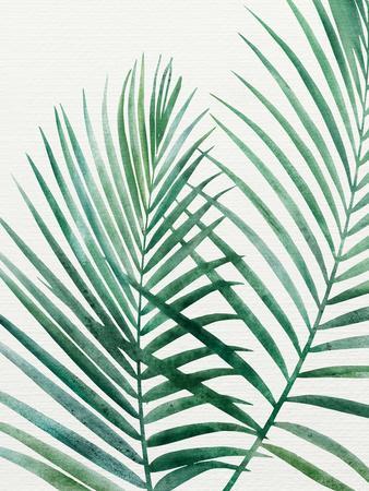 https://imgc.artprintimages.com/img/print/emerald-palms_u-l-f9i6zr0.jpg?p=0