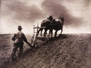 East Anglian Life: A Stiff Pull by Emerson Peter Henry