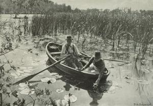 Gathering Water Lillies by Emerson Peter Henry