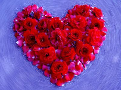 Roses Form Heart Shape on Blue Background