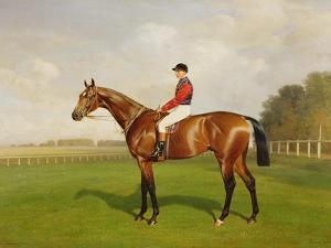 Diamond Jubilee', Winner of the 1900 Derby, 1900 by Emil Adam