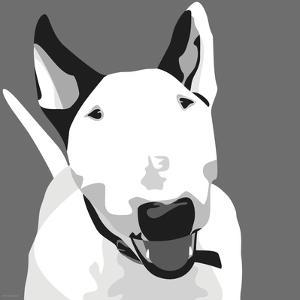 Bull Terrier by Emily Burrowes