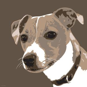 Jack Russell by Emily Burrowes
