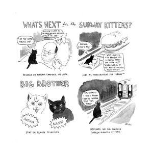 """""""What's next for the Subway Kittens?"""" - Cartoon by Emily Flake"""