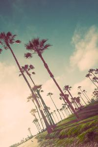 Venice Beach Fun by Emily Navas