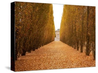 Versailles in Fall II
