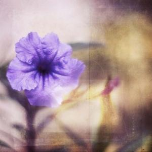 Purple Tranquility I by Emily Robinson