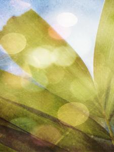 Tropical Daydream II by Emily Robinson