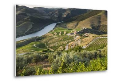 Douro Valley, Douro River, Porto. Valley Is Lined with Steeply Sloping Hills and Vineyards