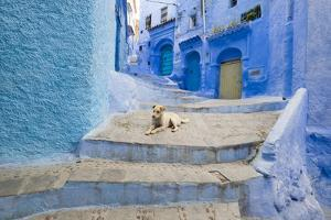 Morocco. Blue Narrow Streets and Neighborhooda of Chaouen by Emily Wilson