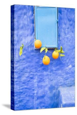 Morocco, Chaouen. Juice Seller Display of Oranges