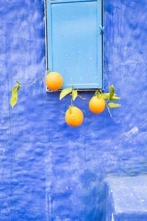 Morocco, Chaouen. Juice Seller Display of Oranges by Emily Wilson