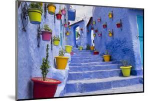 Morocco, Chaouen. Plantings in Colorful Pots Line the Narrow Corridors by Emily Wilson