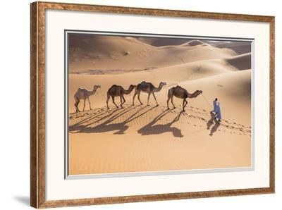 Morocco, Erg Chegaga Is a Saharan Sand Dune