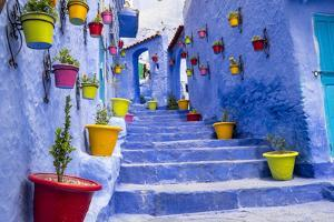 North Africa, Morocco, Traiditoional blue streets of Chefchaouen. by Emily Wilson