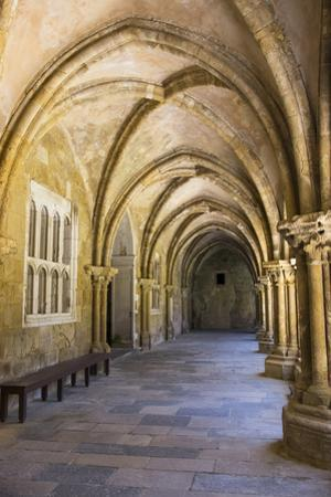 Portugal, Coimbra. Old Cathedral Cloister. Archways, Walking Paths, Courtyard by Emily Wilson