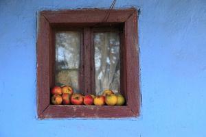 Romania, Maramures County, Dobricu Lapusului. Farm Window with apples. by Emily Wilson