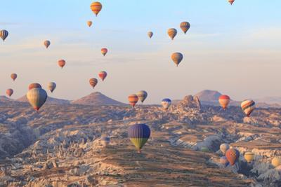 Turkey, Anatolia, Cappadocia, Goreme. Hot air balloons above Red Valley. by Emily Wilson