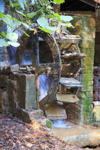 Turkey, Antalya, Kursunlu Waterfalls, Kursunlu Selalesi. Water wheel. by Emily Wilson