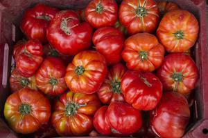 Turkey, Gaziantep, Informally Called Antep, Fresh Vegetables and Fruits are Plentiful. Tomatoes by Emily Wilson