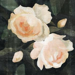 Soft Garden Roses I by Emma Caroline