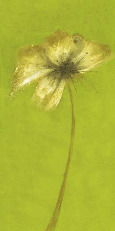 Floral Burst VIII