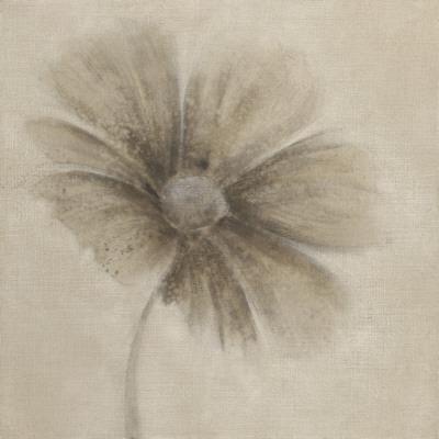 Tonal Flowers I