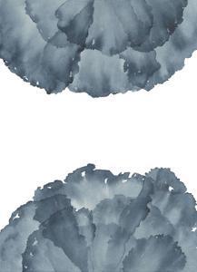 Sea Petals 2 by Emma Jones
