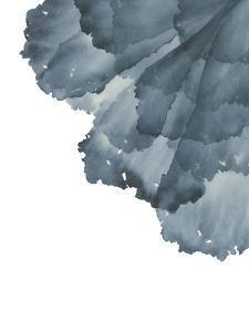 Sea Petals 3 by Emma Jones
