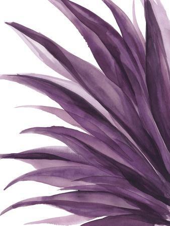 Violet Palms 1
