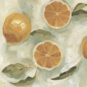 Citrus Study in Oil III by Emma Scarvey