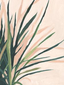 Frond Impression II by Emma Scarvey