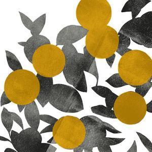 Shadow Branch II by Emma Scarvey