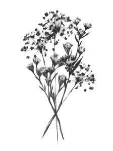 Wild Roadside Bouquet I by Emma Scarvey