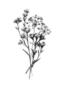 Wild Roadside Bouquet III by Emma Scarvey