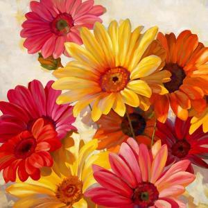 Daisies for Spring by Emma Styles