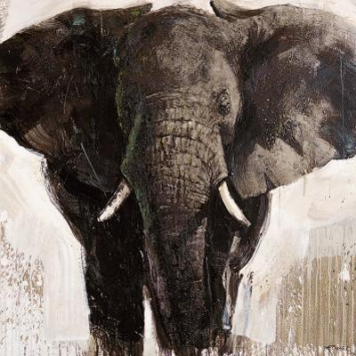Elephant by Emmanual Michel